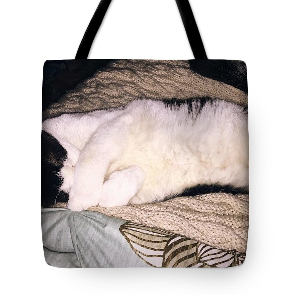 Tote Bag featuring the photograph Kitty Kitty by Reagen Guthrie