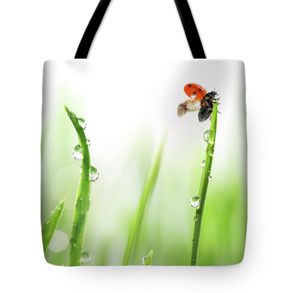 Hanging Tote Bag featuring the photograph Ladybug On Green Grass by Sbayram