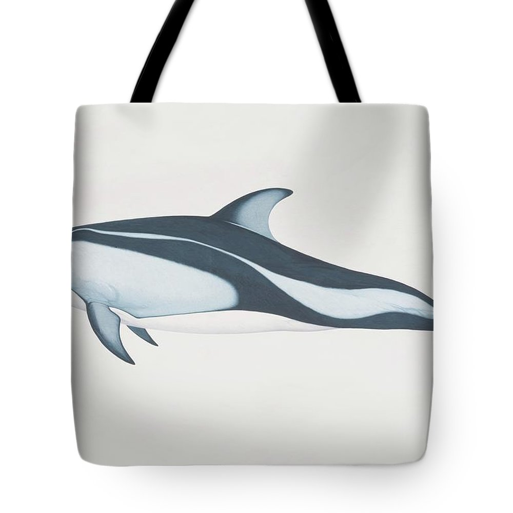 White Background Tote Bag featuring the digital art Lagenorhynchus Obliquidens, Pacific by Martin Camm