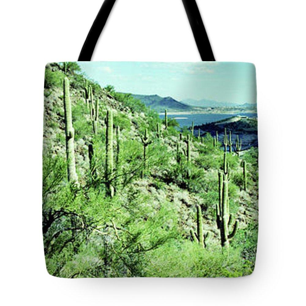 Lake Boat Boating Saguaro Cactus Tote Bag featuring the photograph Lake Pleasant Az 045a by George Arthur Lareau