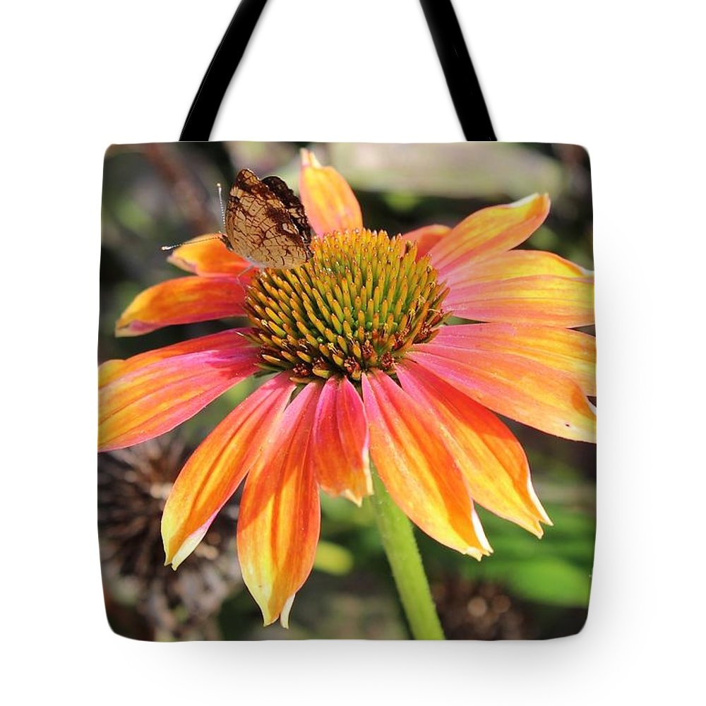 Flower Tote Bag featuring the photograph Last Cone Flower by Leslie Gatson-Mudd