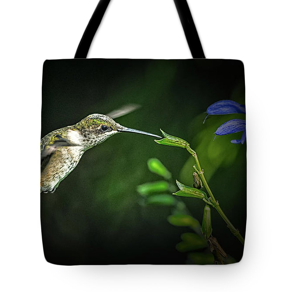 Hummingbirds Tote Bag featuring the photograph Laurens Pick by Tom Stovall Sr