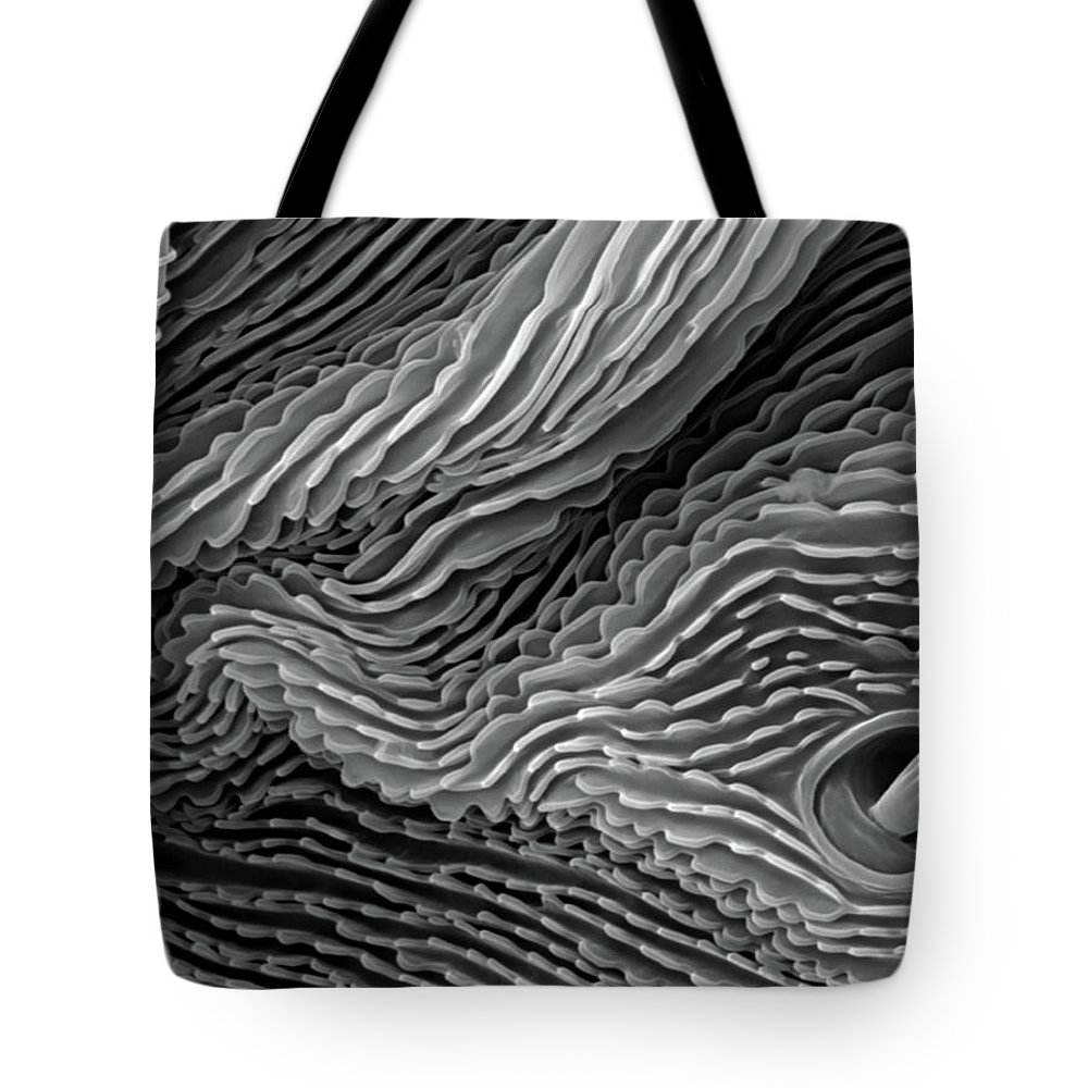 Microscope Tote Bag featuring the photograph Lavender Leaf, Springtail, Sem by Sheri Neva