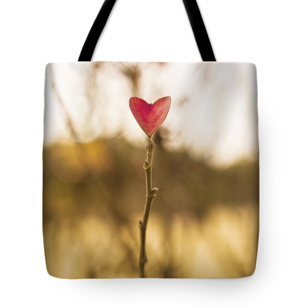 Outdoors Tote Bag featuring the photograph Leaf In Heart Shape by Twomeows