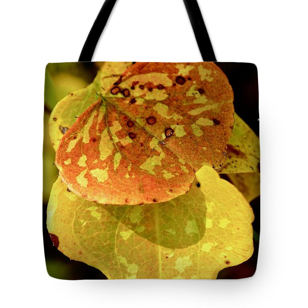 Leaves Tote Bag featuring the photograph Leaf Patterns by Marsha McDonald
