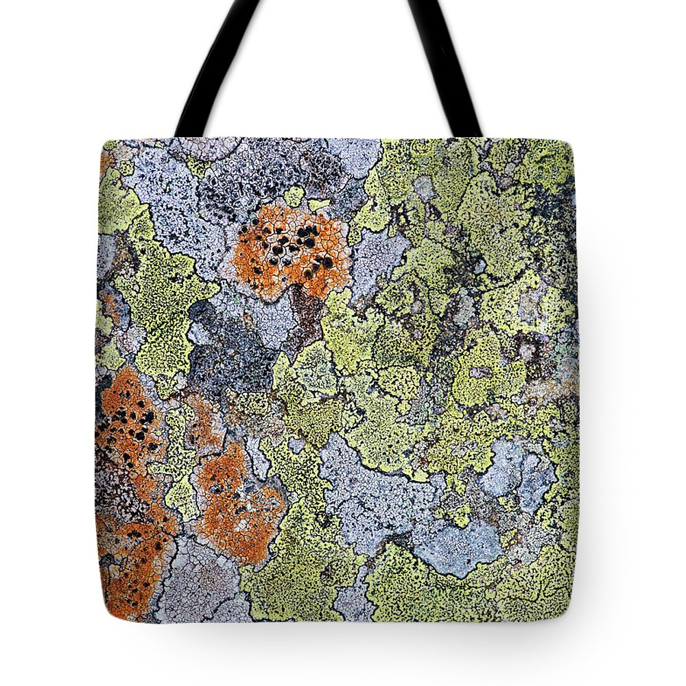 Lichen Tote Bag featuring the photograph Lichen On Stone by Tim Gainey