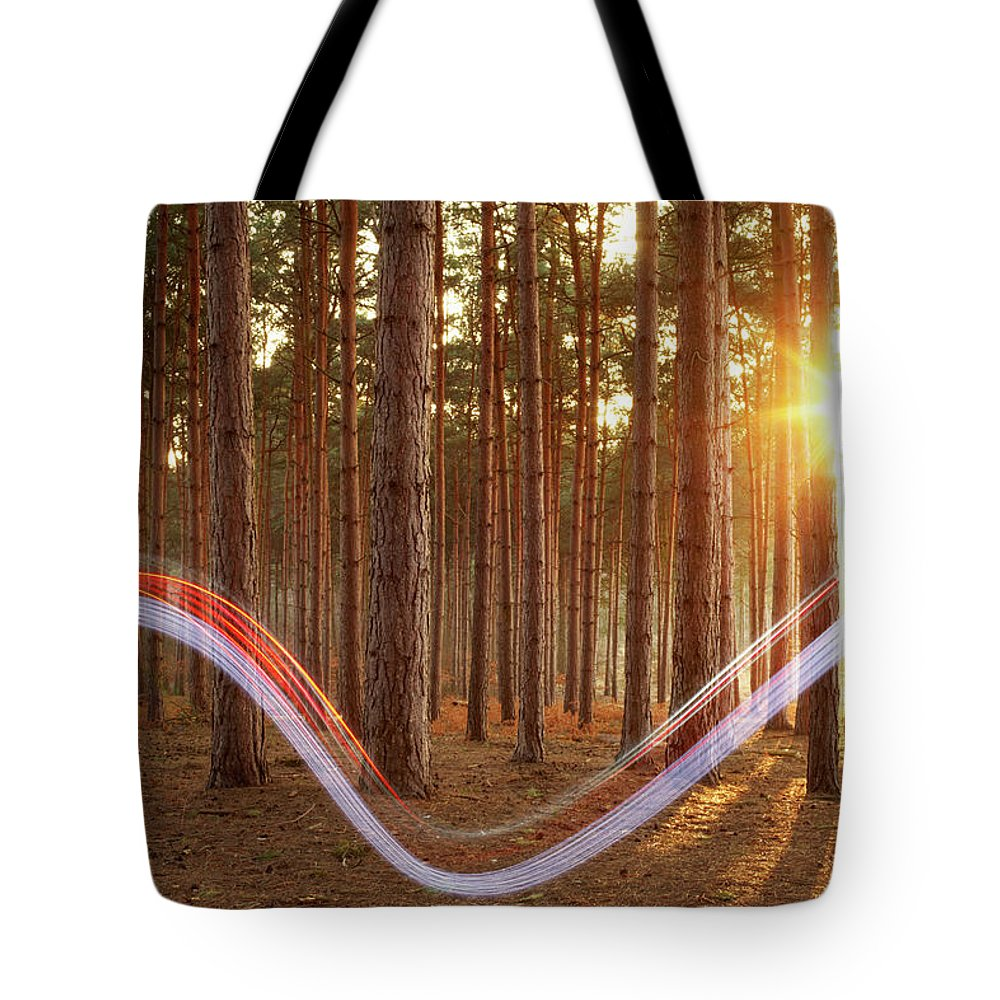 Environmental Conservation Tote Bag featuring the photograph Light Swoosh In Woods by Tim Robberts