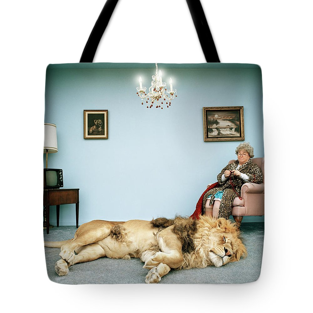 Pets Tote Bag featuring the photograph Lion Lying On Rug, Mature Woman Knitting by Matthias Clamer