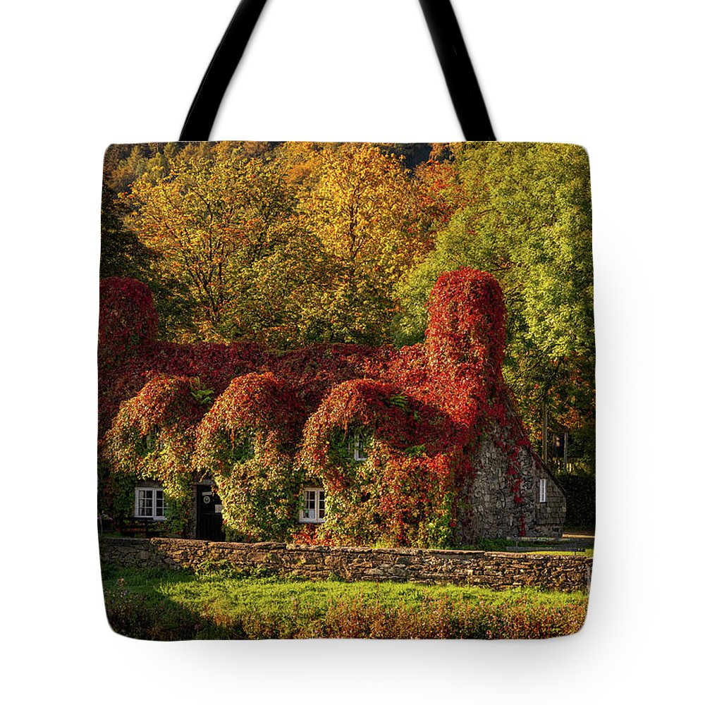 Tu Hwnt I'r Bont Tote Bag featuring the photograph Llanrwst Tea Room Autumn by Adrian Evans