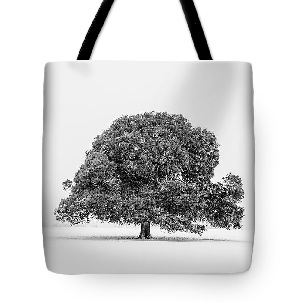 Scenics Tote Bag featuring the photograph Lone Holm Oak Tree In Snow, Somerset, Uk by Nick Cable