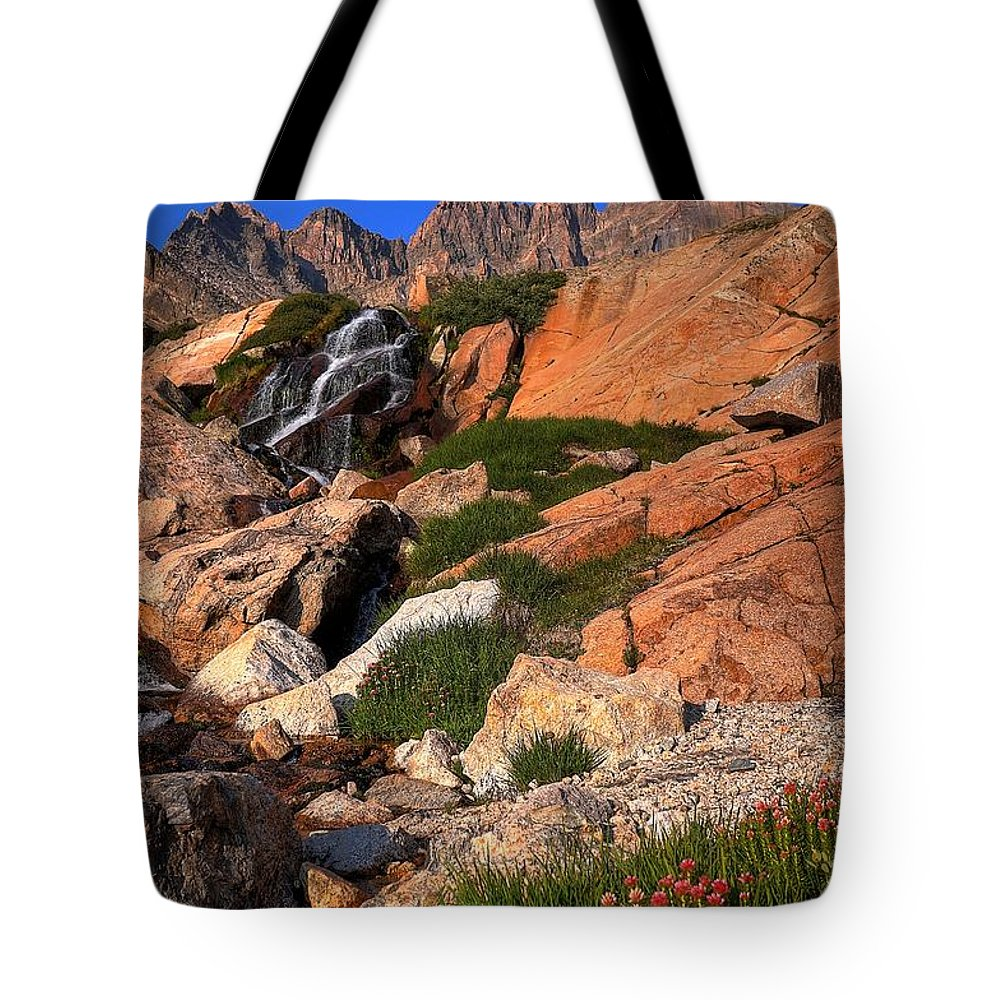 Waterfall Tote Bag featuring the photograph Longs Fall by David Ross