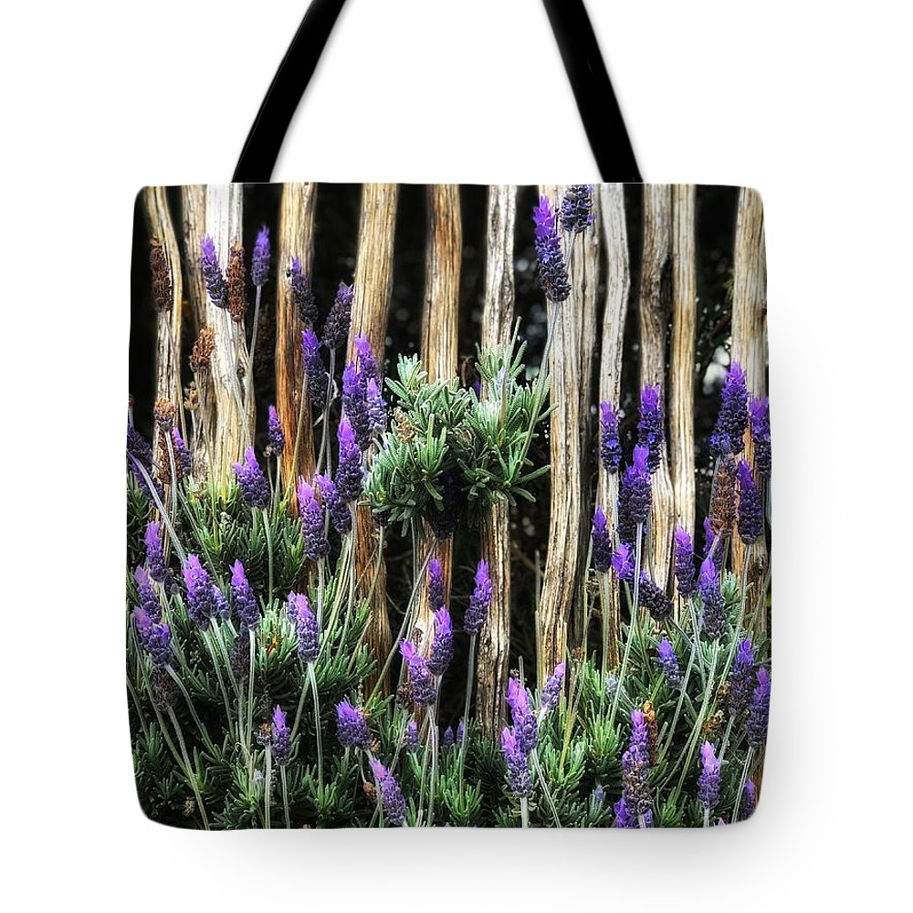 Flower Tote Bag featuring the photograph Love Of Lavender by Cassie Robinson