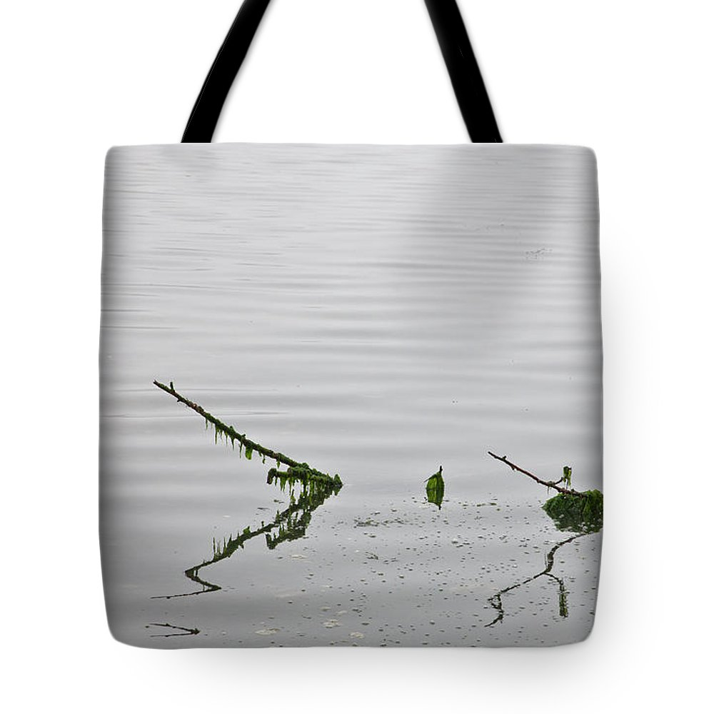 Reflection Tote Bag featuring the photograph Low Tide by Richard Lynch
