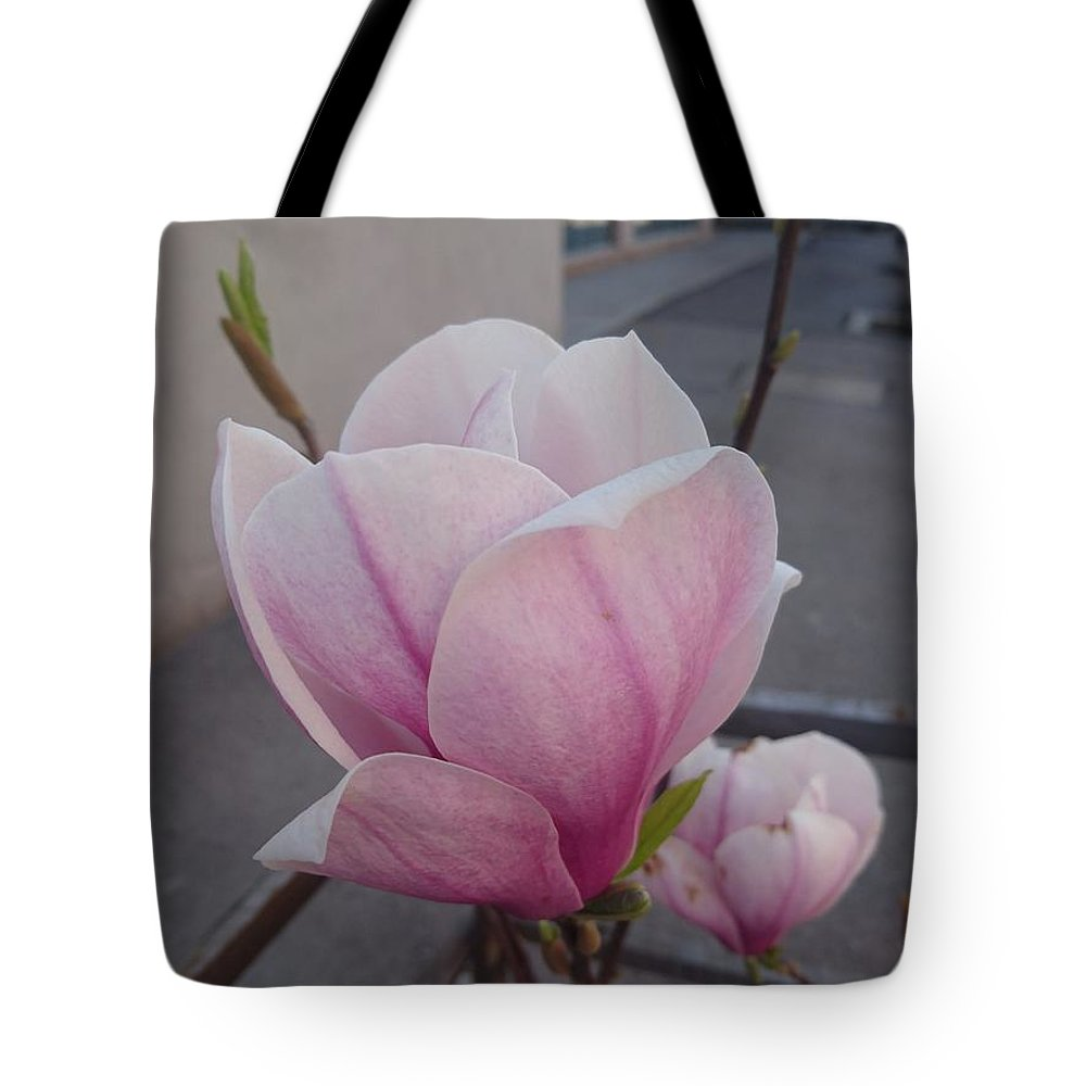 Tote Bag featuring the photograph Magnolia by Anzhelina Georgieva