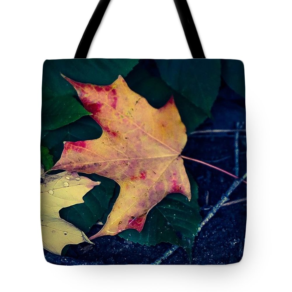 Maple Leaf Photograp Tote Bag featuring the photograph Maple And Ground by Desmond Raymond