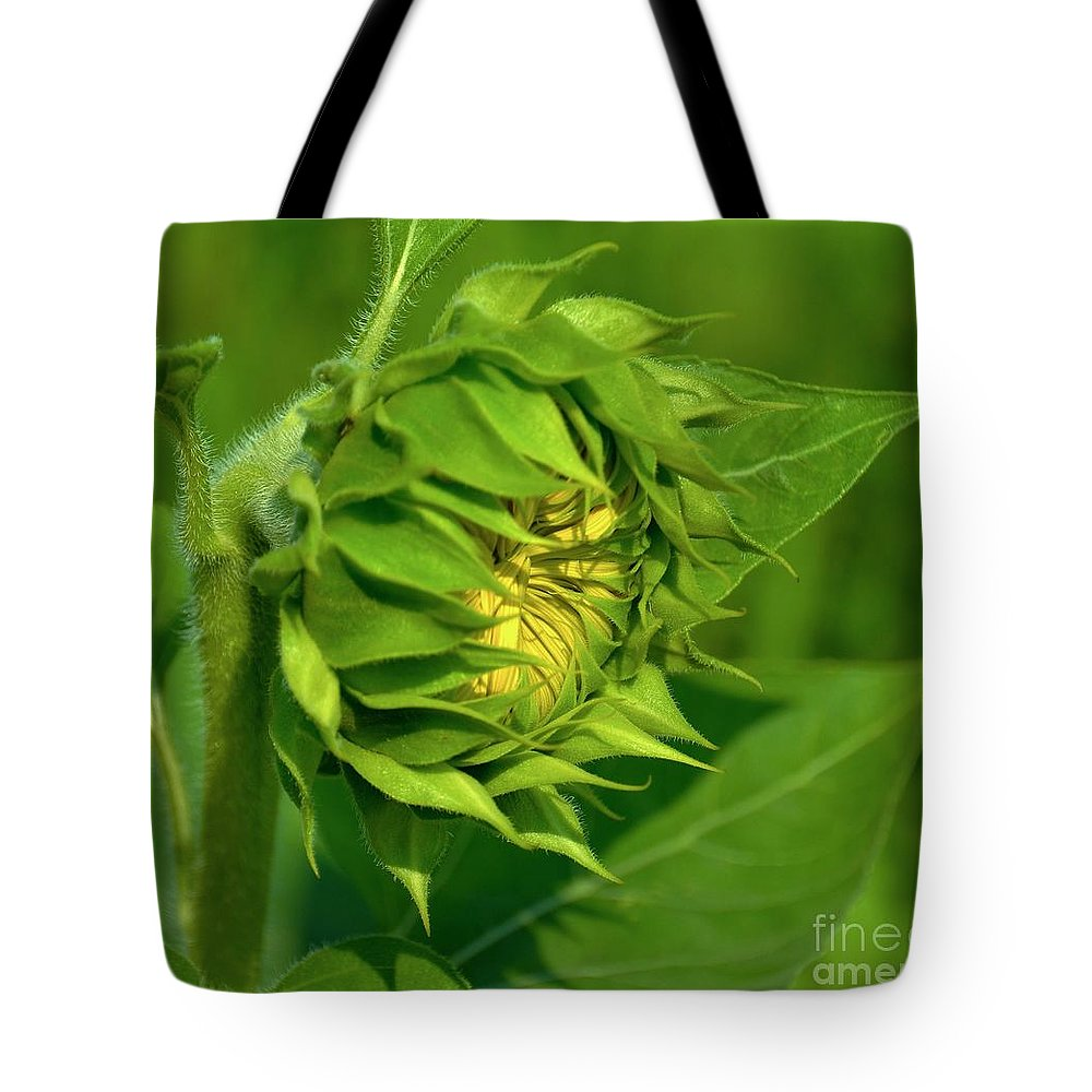 Sunflower Tote Bag featuring the photograph Metamorphosis-2 by Terri LeSaint-Keller