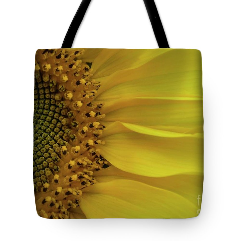 Sunflower Tote Bag featuring the photograph Metamorphosis-3 by Terri LeSaint-Keller