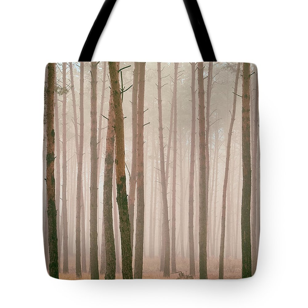 Nature Tote Bag featuring the photograph Misty Pines. Horytsya, 2018. by Mayk's PhotoArt