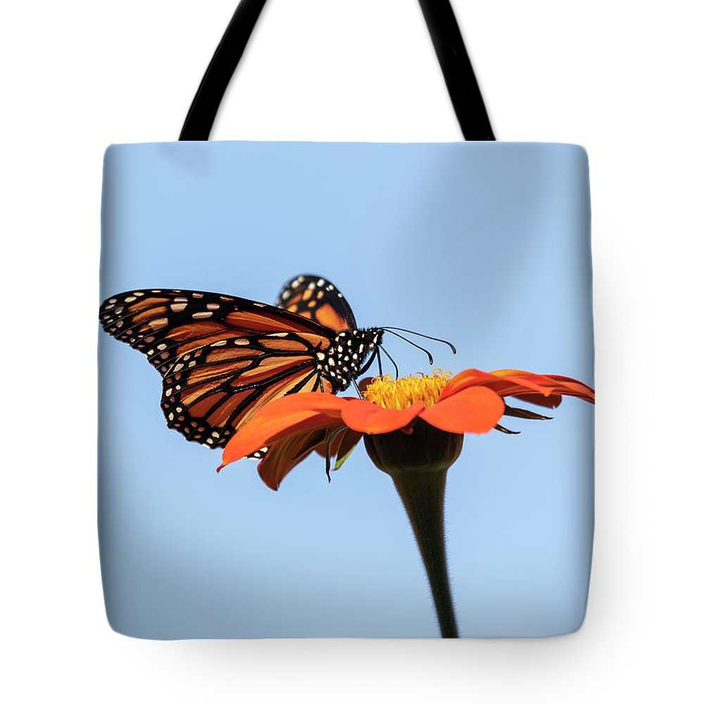Monarch Butterfly Tote Bag featuring the photograph Monarch 2018-27 by Thomas Young