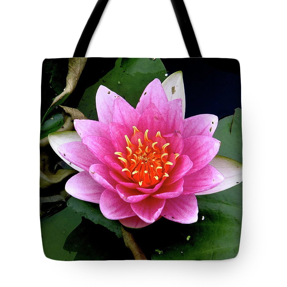 Photography Tote Bag featuring the photograph Monet Water Lilly by Jeffrey PERKINS
