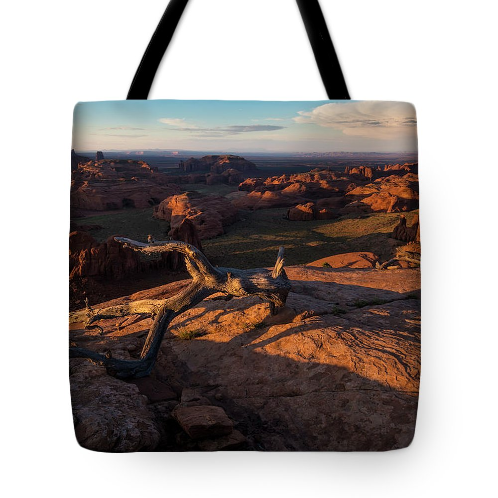 Utah Tote Bag featuring the photograph Monument Valley From Hunts Mesa by Larry Marshall