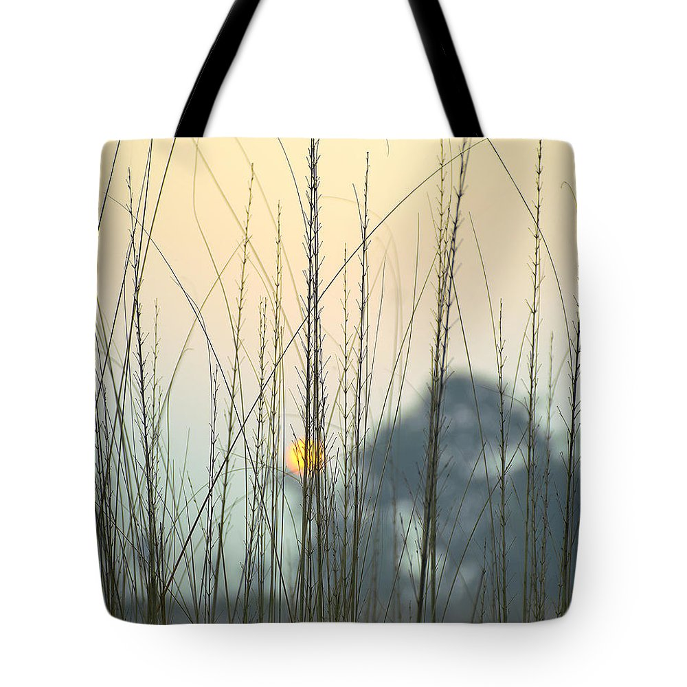 Landscape Tote Bag featuring the photograph morning Star by Ravi Bhardwaj
