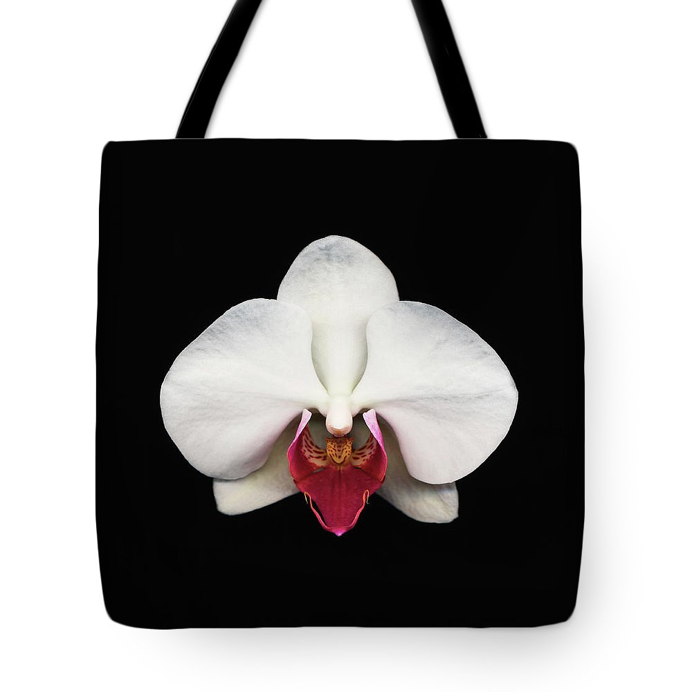 Black Background Tote Bag featuring the photograph Moth Orchid Against Black Background by Mike Hill
