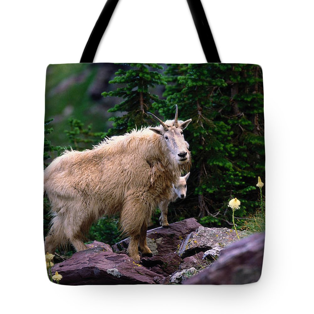 Animal Themes Tote Bag featuring the photograph Mountain Goat Oreamnos Americanus by Art Wolfe