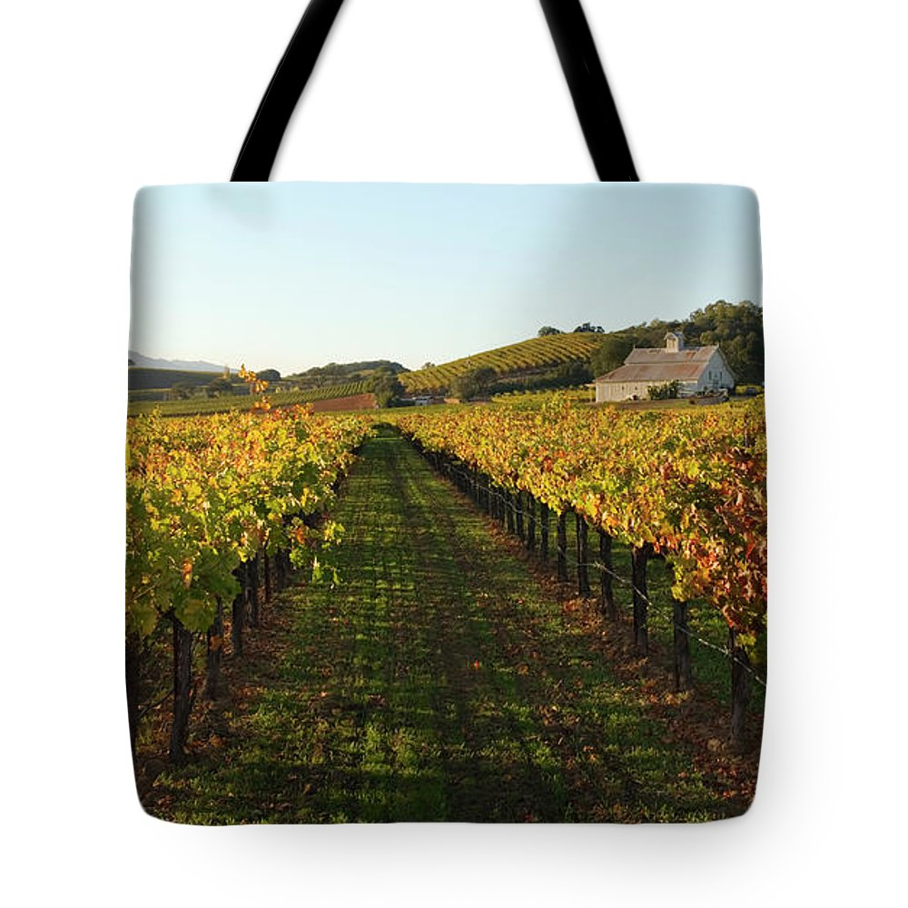 Scenics Tote Bag featuring the photograph Napa Valley Vineyard In Autumn by Leezsnow