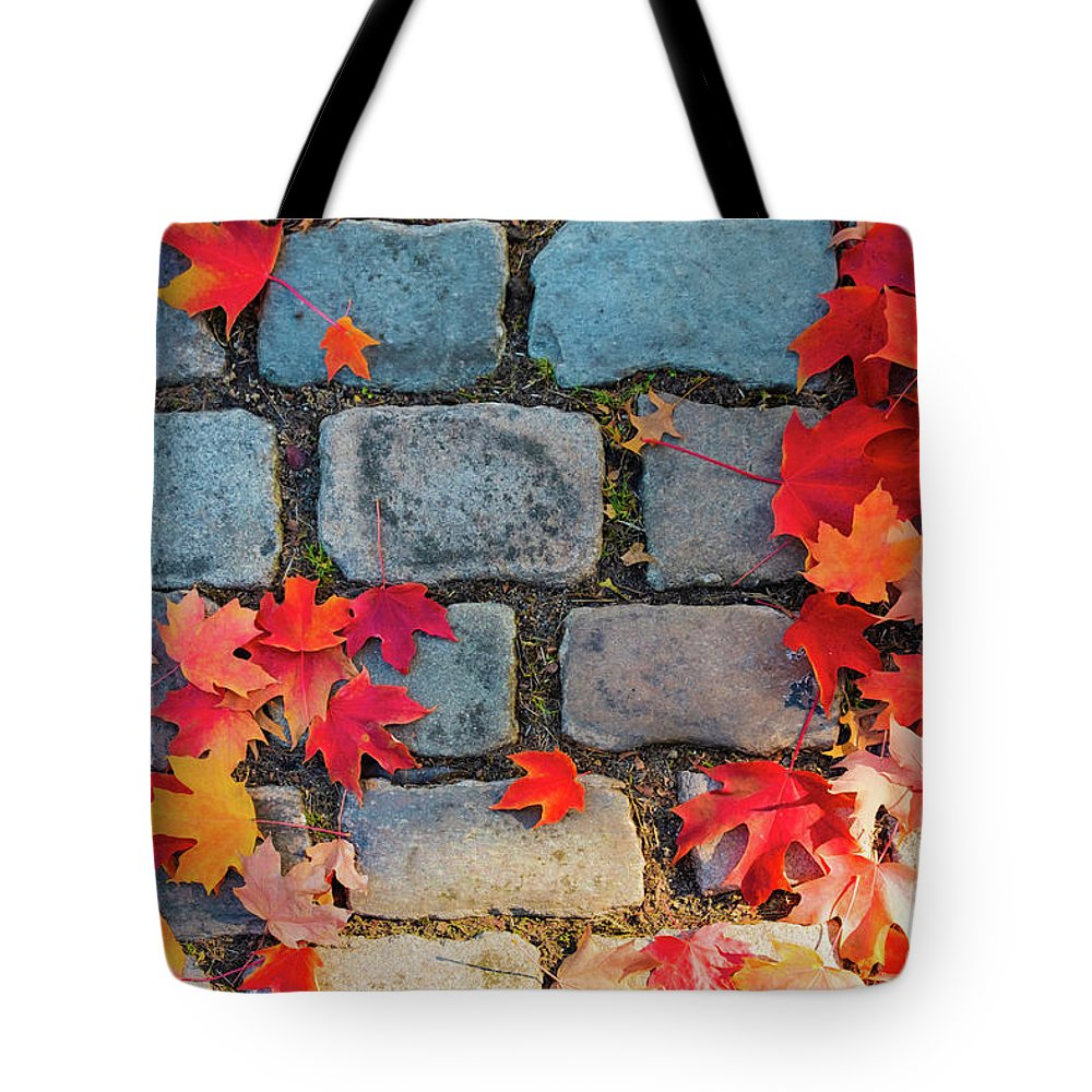 Natural Autumn Leaf Background Tote Bag featuring the photograph Natural Autumn Leaf Background by Marina Usmanskaya