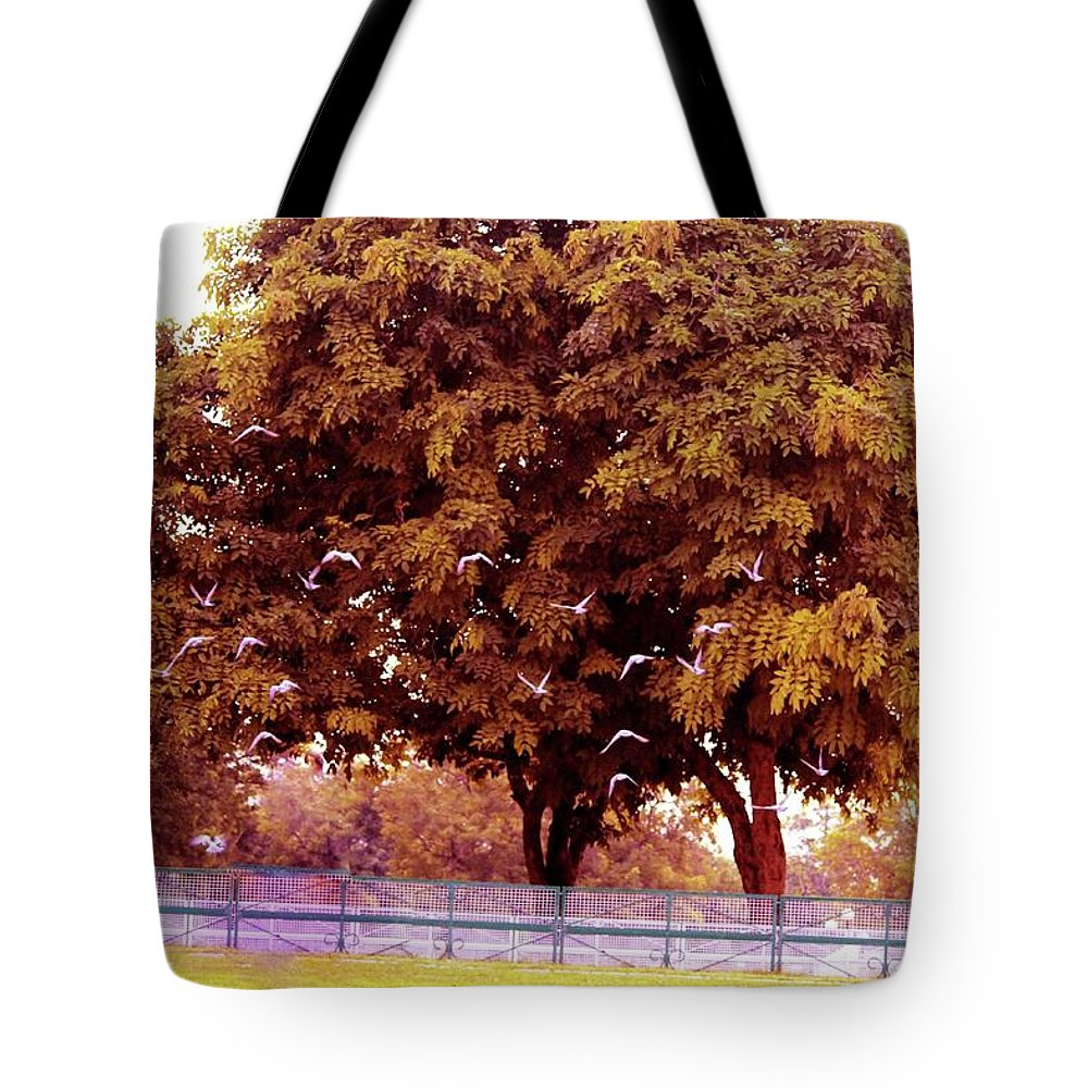 Tote Bag featuring the photograph Nature by Sahil Sachdeva