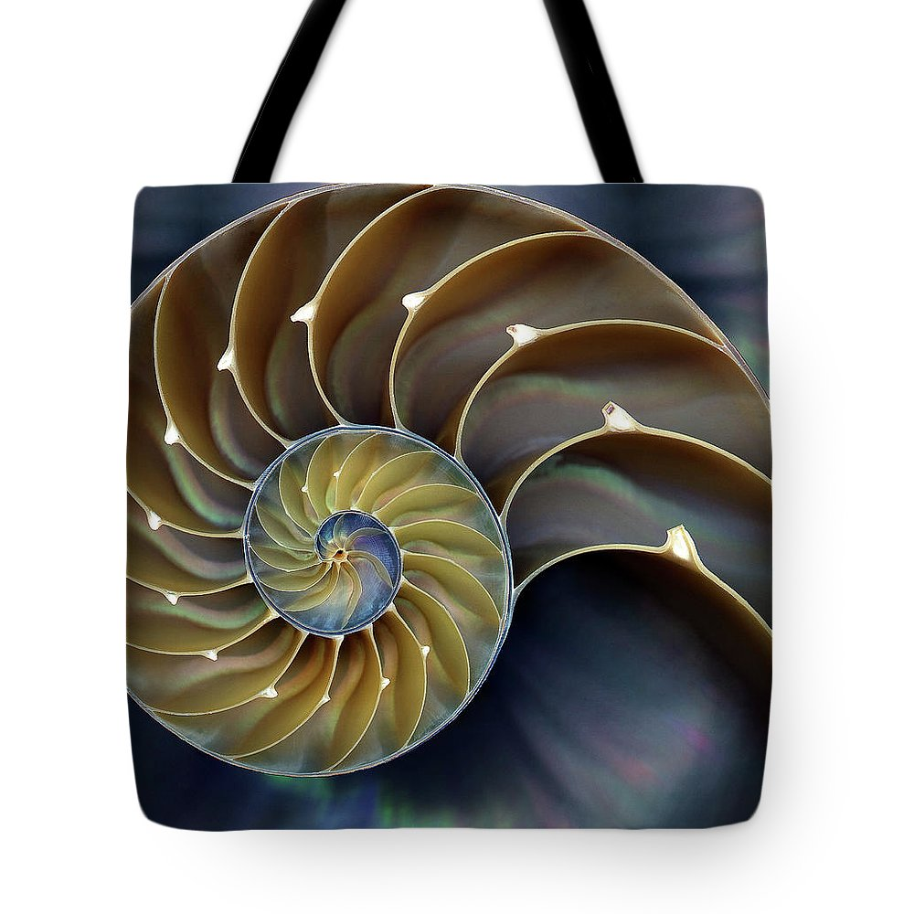Cephalopod Tote Bag featuring the photograph Nautilus by 0049-1215-16-2610334597