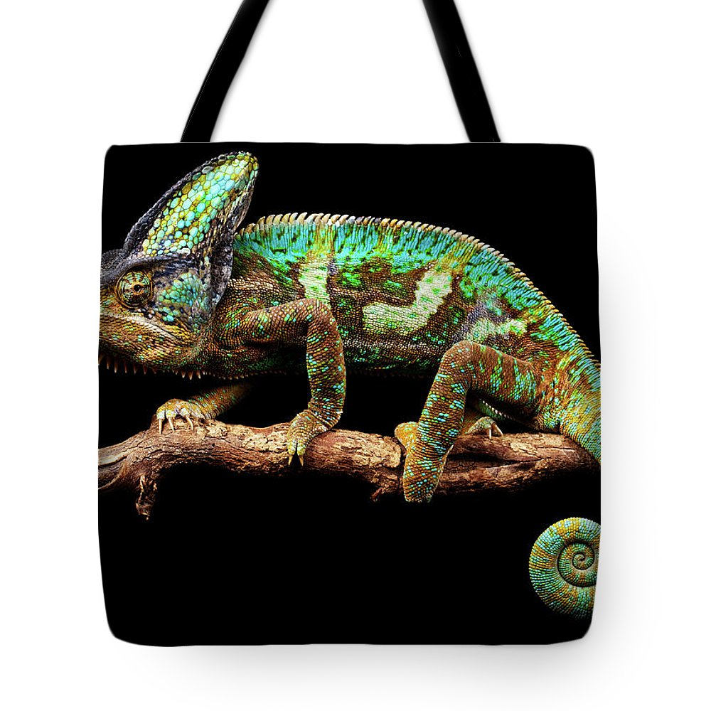Animal Themes Tote Bag featuring the photograph Nice And Slow by Markbridger