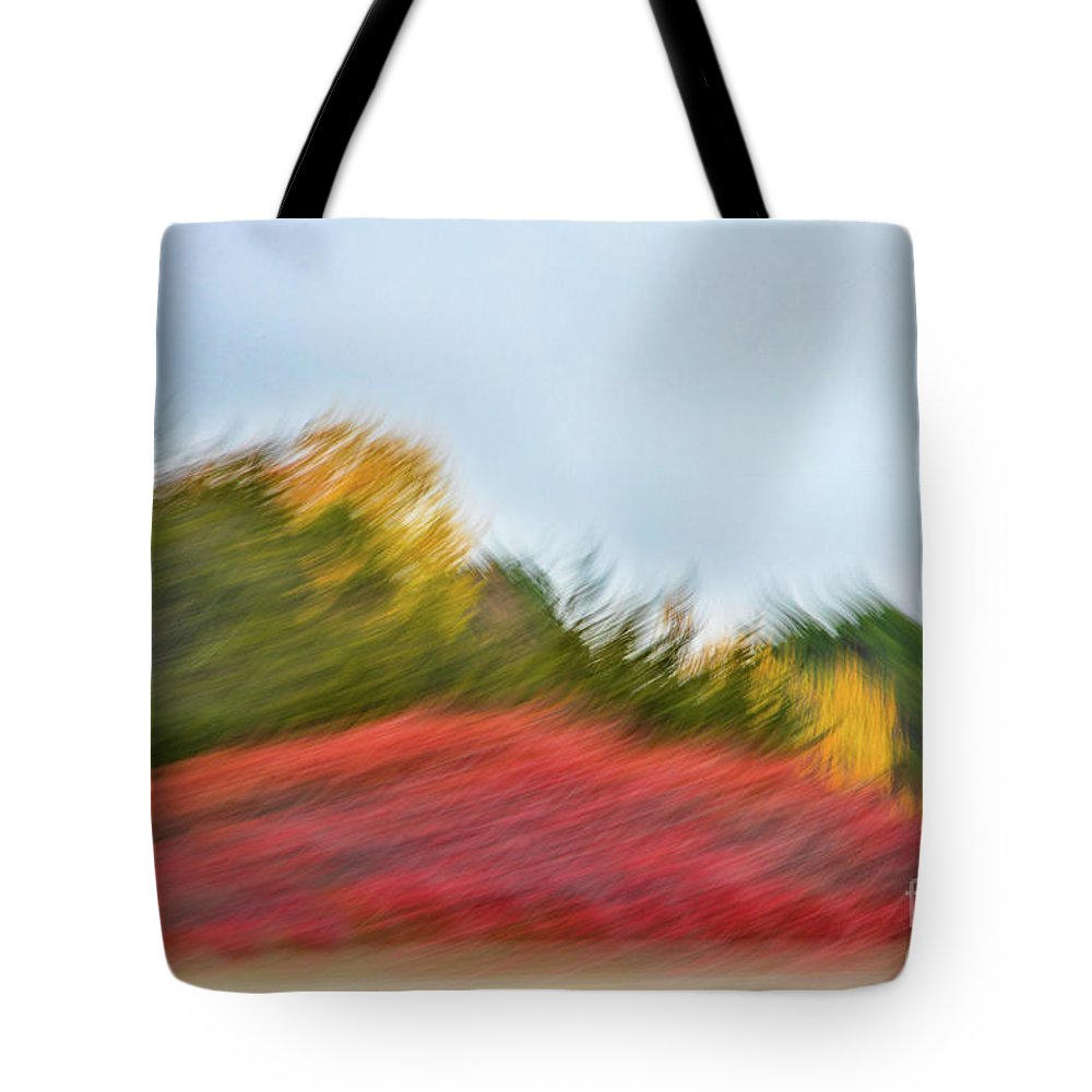 Abstracts Tote Bag featuring the photograph November Howls the Landscape Down by Marilyn Cornwell