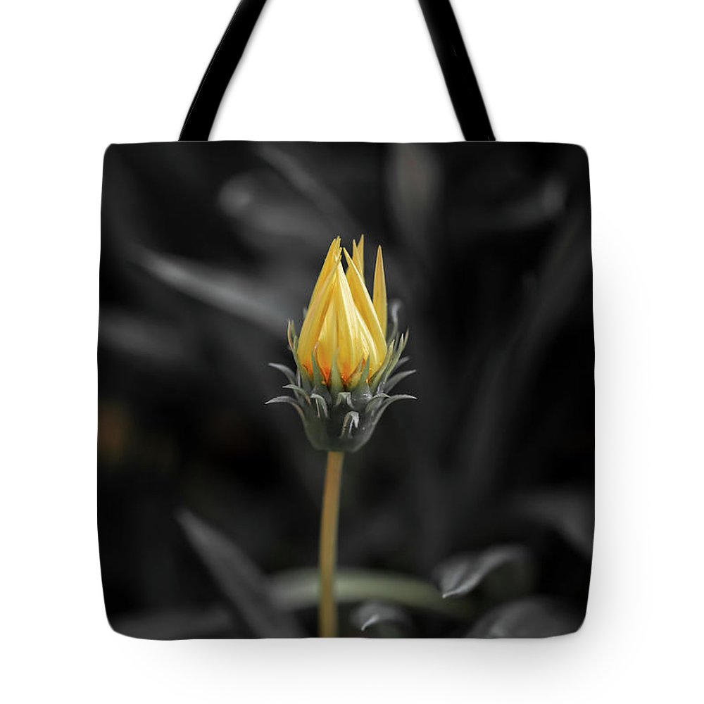Australia Tote Bag featuring the photograph Opening Up by Az Jackson
