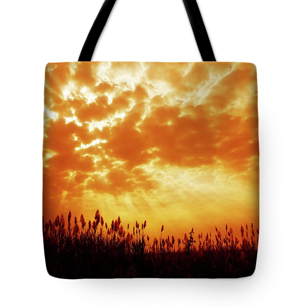 Orange Color Tote Bag featuring the photograph Orange Tinted Sky Illustrating by Tommyix