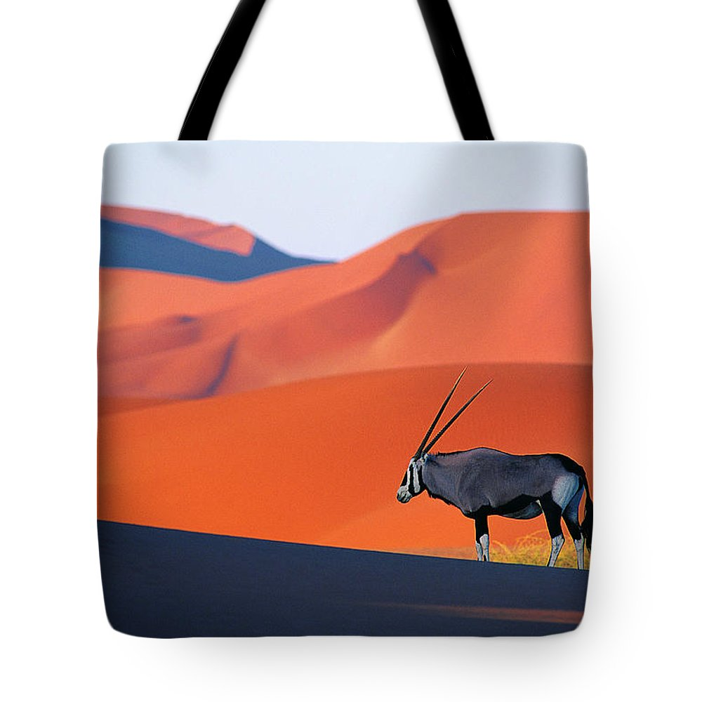 Scenics Tote Bag featuring the photograph Oryx Antelope by Natphotos