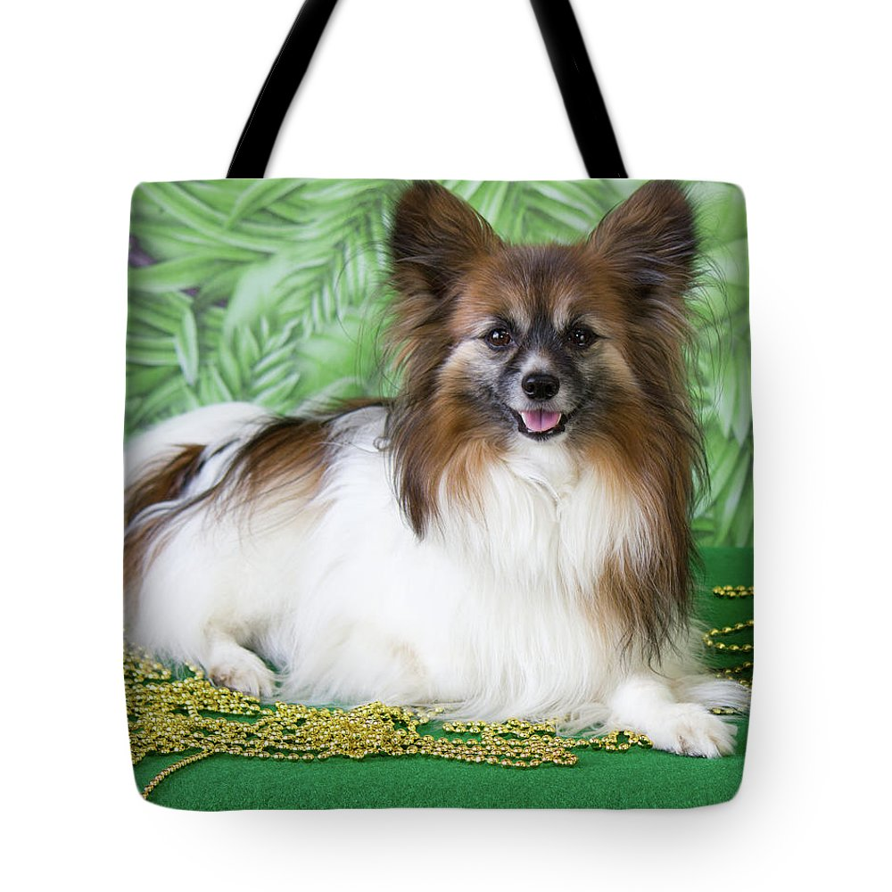 Papillon Tote Bag featuring the photograph Papillon On Green by Donna Anderson