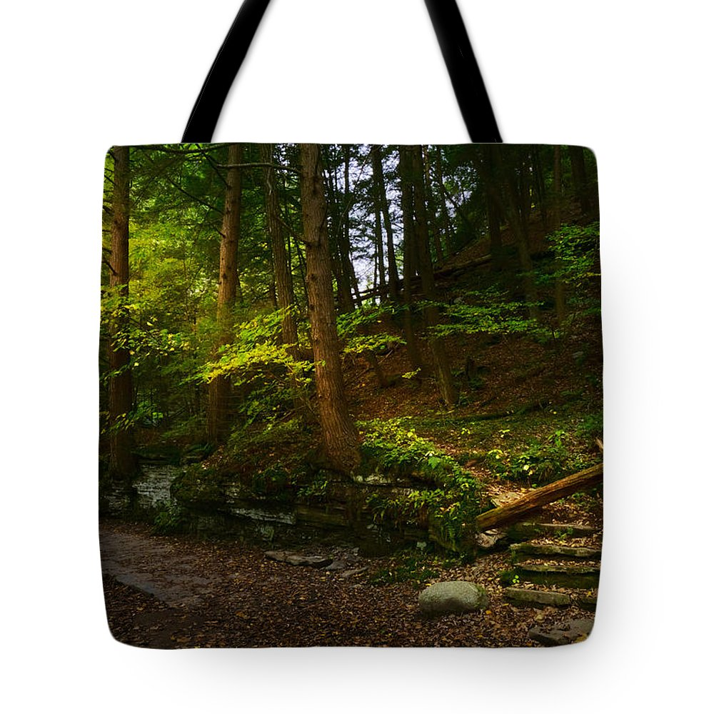 Fall Tote Bag featuring the photograph Pathway by Amanda Jones