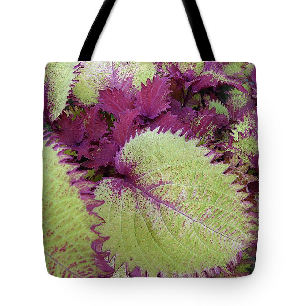 Leaves Red Green Patterns Nature Plant Tote Bag featuring the photograph Patterns In Nature by Lisa Bates