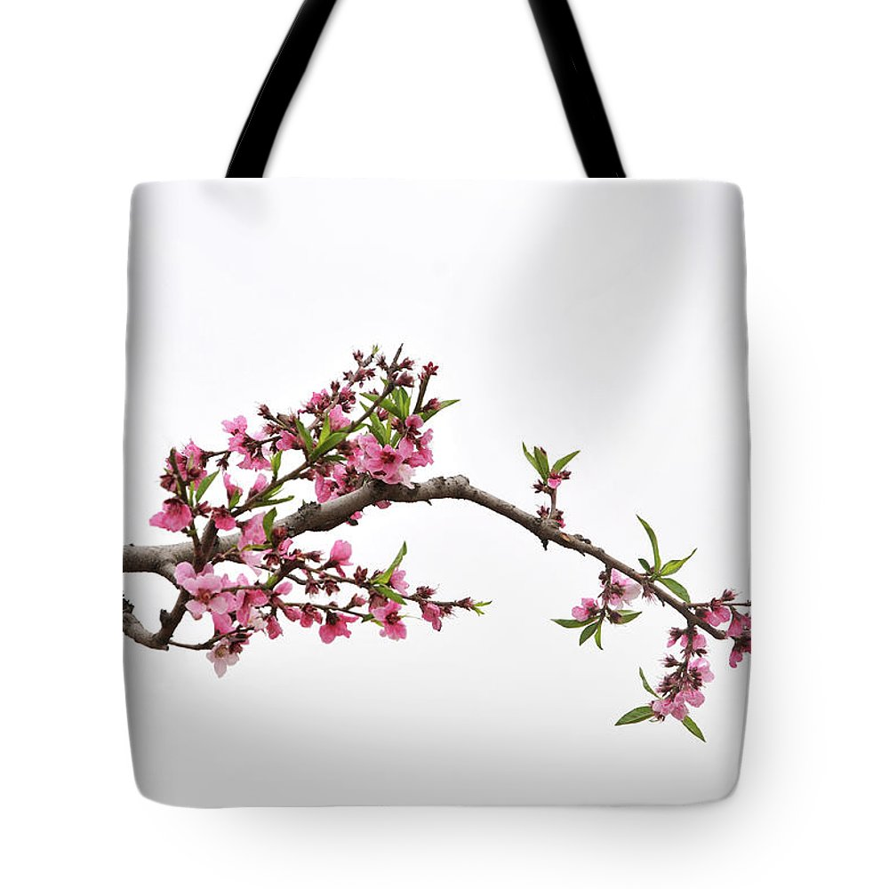 Season Tote Bag featuring the photograph Peach by Sdlgzps