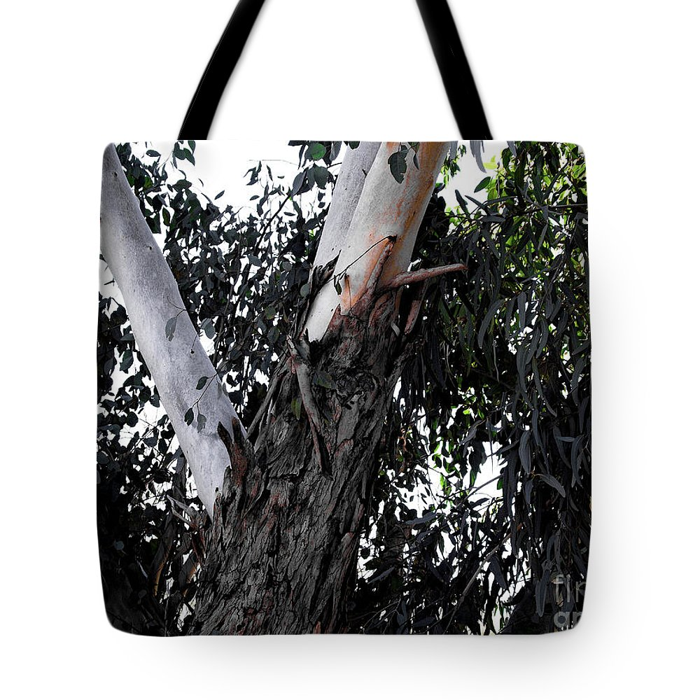 Bark Tote Bag featuring the photograph Pealing Back by Darryl Treon