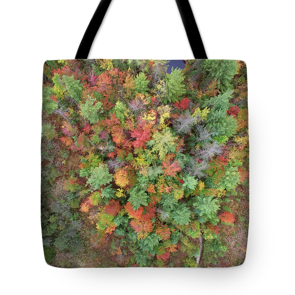 Tote Bag featuring the photograph Pickeral Lake 10121704 by Rick Veldman