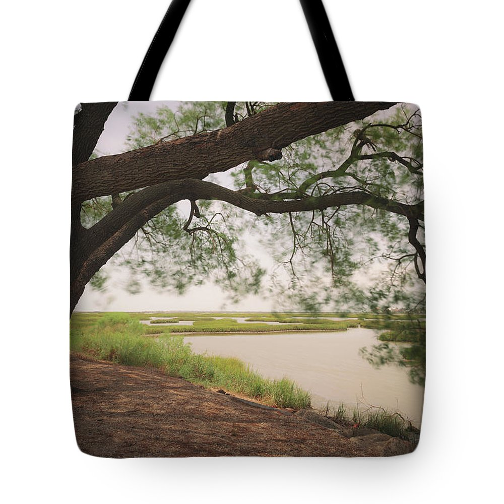 Pierce Marsh Tote Bag featuring the photograph Pierce Marsh by Ray Devlin