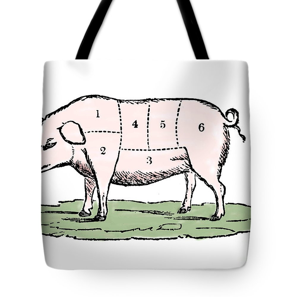 Cuts Of Pork Tote Bag featuring the drawing Pig, Cuts Of Pork by European School
