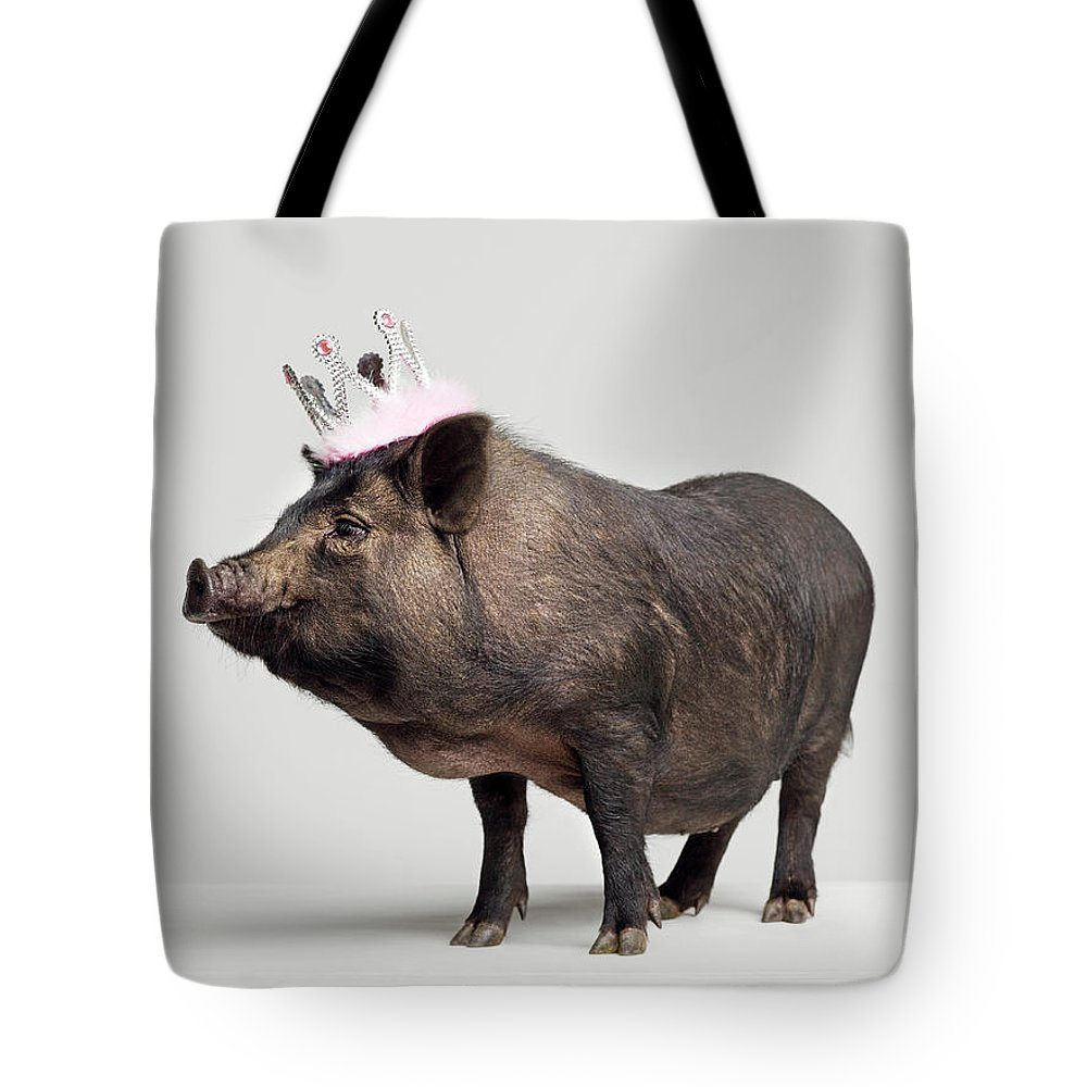 Crown Tote Bag featuring the photograph Pig With Toy Crown On Head, Studio Shot by Roger Wright