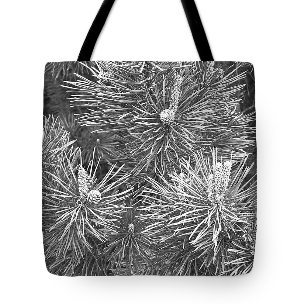 Needle Tote Bag featuring the photograph Pine Cones And Needles, Close-up B&w by George Marks