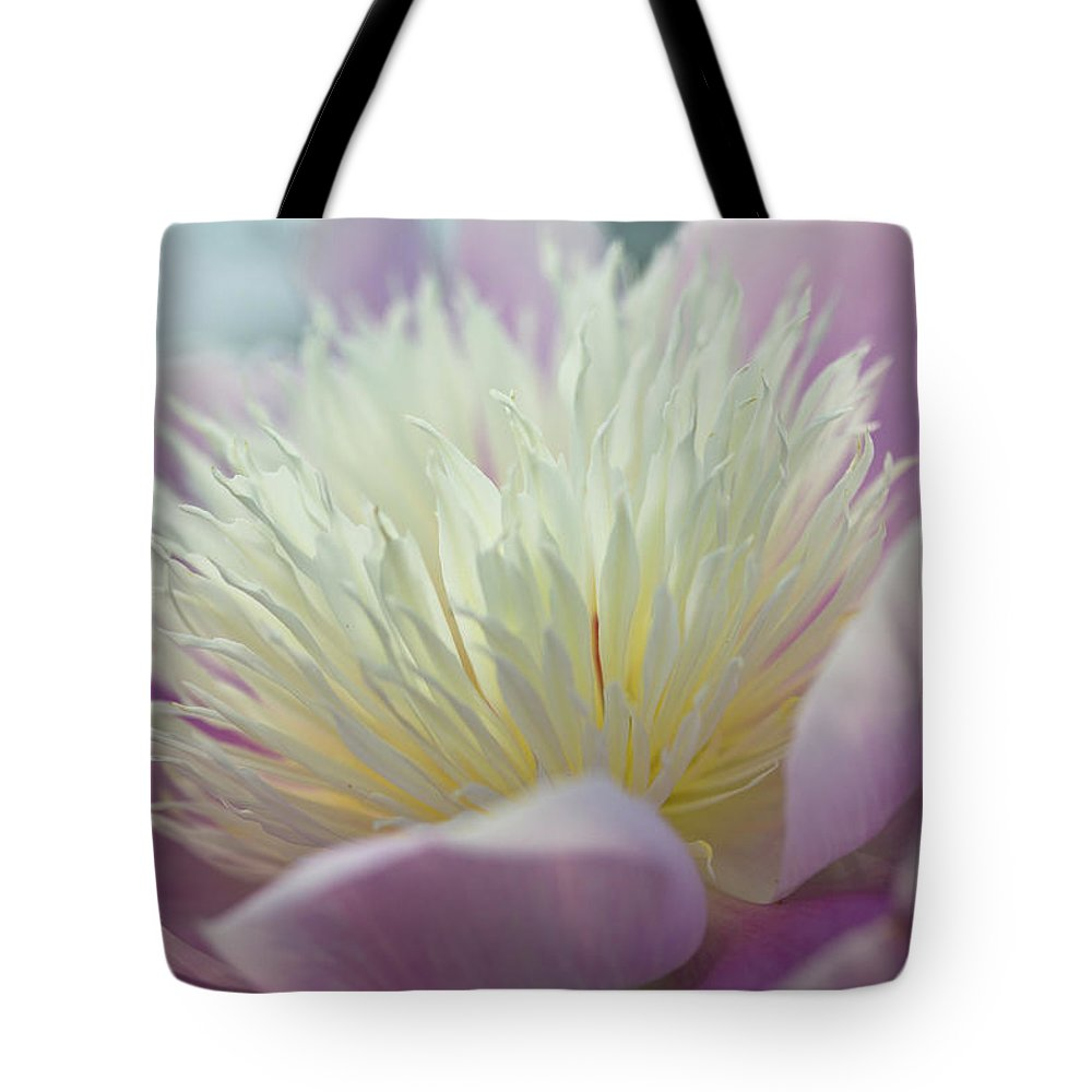 Toronto Tote Bag featuring the photograph Pink And White Peony by Lynda Murtha