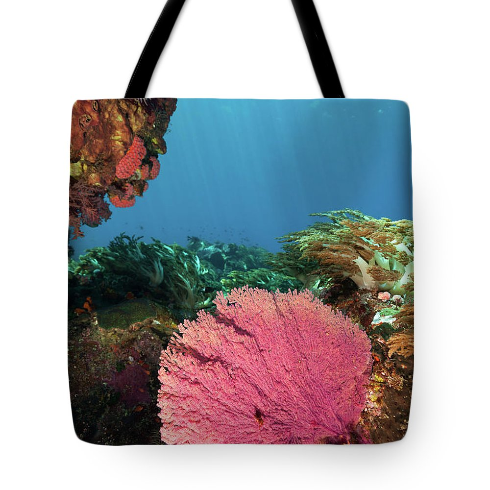 Underwater Tote Bag featuring the photograph Pink Gorgonian Sea Fan, Pura Island by Ifish