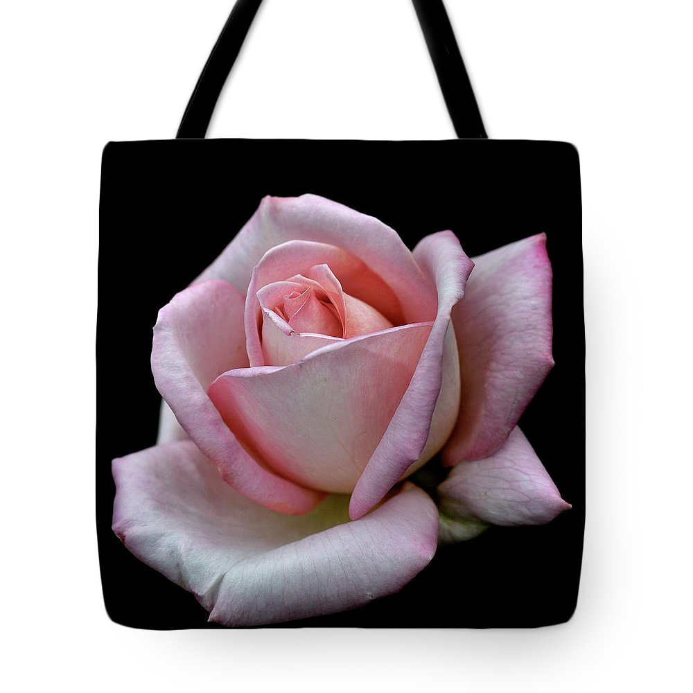 Part Of A Series Tote Bag featuring the photograph Pink Rose by I Love Photo And Apple.